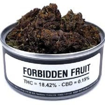 Forbidden Fruit for sale